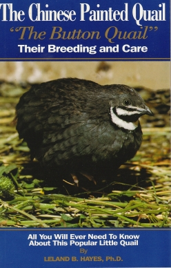 Chinese Painted Quail (Button Quail) book for sale